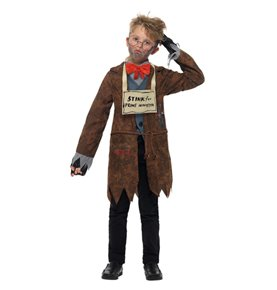 David Walliams Deluxe Mr Stink Costume, Brown