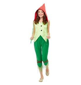 Toadstool Pixie Costume, Green & Red