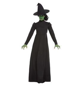 Wicked Witch Costume, Black2